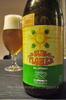 Sun Flower Golden Ale